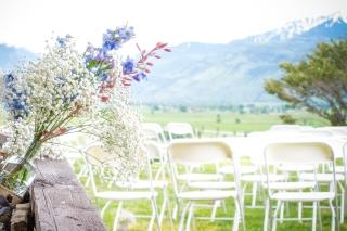 Ridgeway Wedding 6.13.15 cep-0026